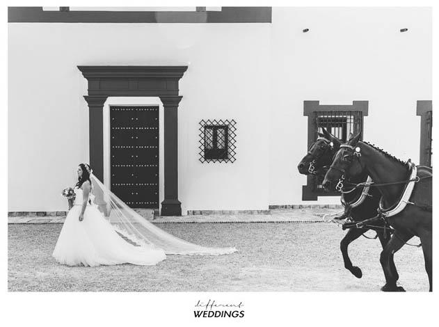 f-p-fotografia-de-boda-hacienda-timoteo-cordoba-30