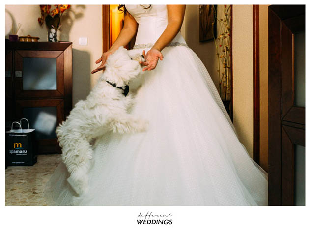 f-p-fotografia-de-boda-hacienda-timoteo-cordoba-3