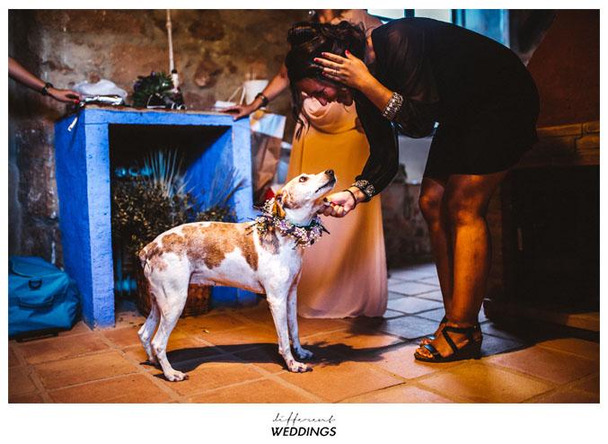 fotografos-de-boda-hacienda-colora-55