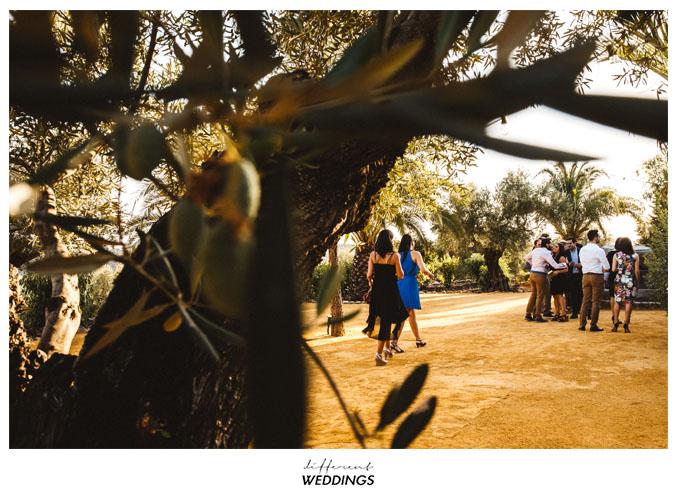 fotografos-de-boda-hacienda-colora-58