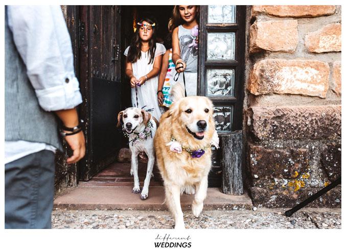 fotografos-de-boda-hacienda-colora-63