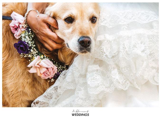 fotografos-de-boda-hacienda-colora-73